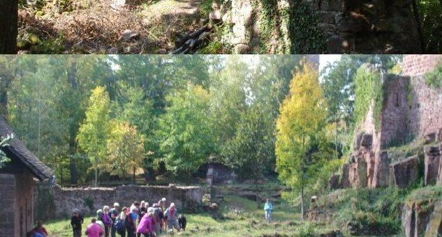 Visiteurs de Franche-Comté et de la Haute-Saône
