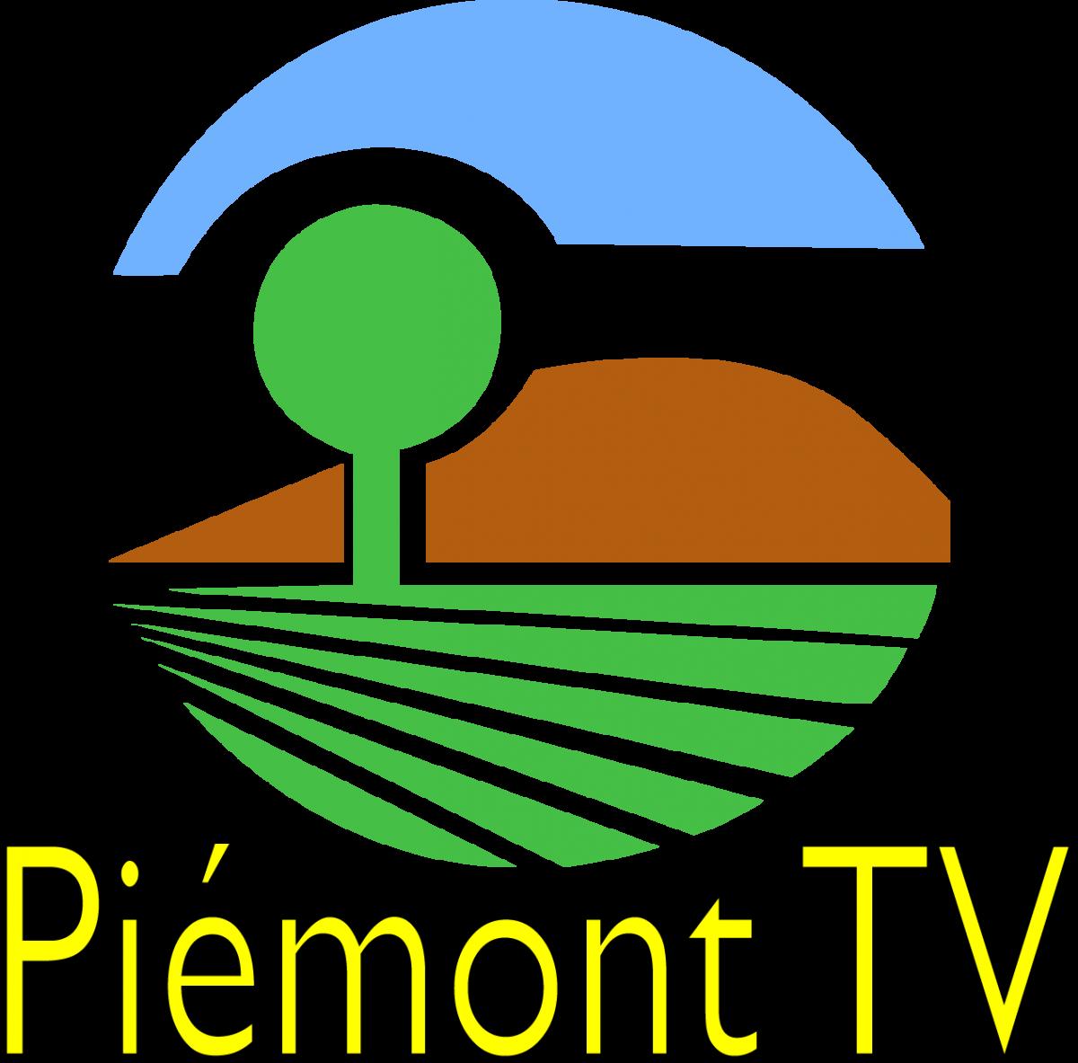 logo PTV dyn